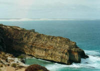 Head Great Australian Bight Whale Watch Tours