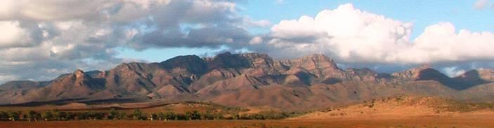Flinders Ranges BIRDSVILLE RACES TOURS