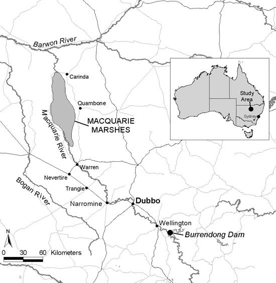 macquarie marshes map