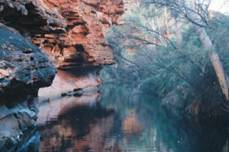 "Kings Canyon ""Garden of Eden"""