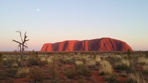 Uluru Sunrise with Kata Tjuta