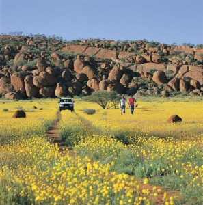 Western Australia Wildflowers Tours