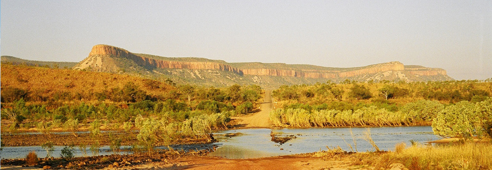 Spirit Safaris Banner Image 9