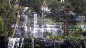 Tasmania Wilderness Explorer Tours 2020 -Russell Falls